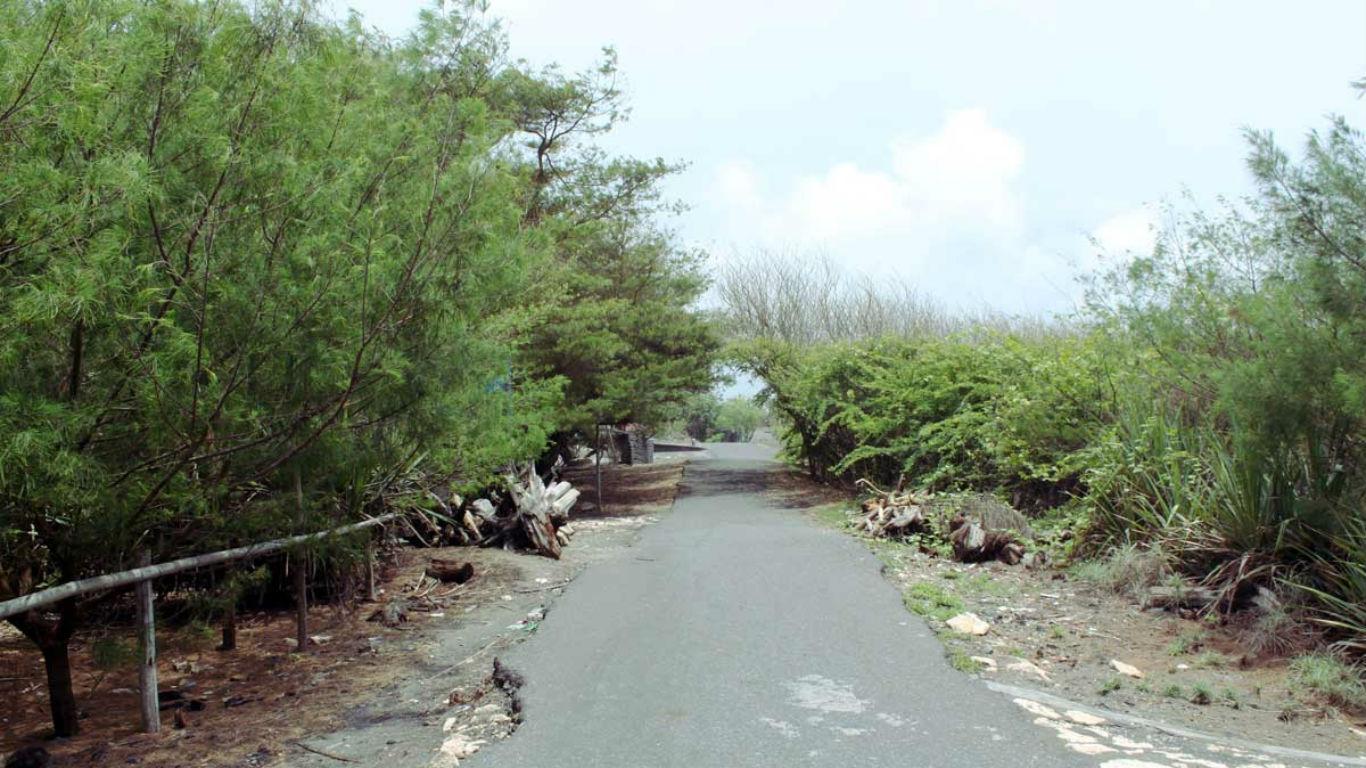 Objek Wisata Pantai Trisik