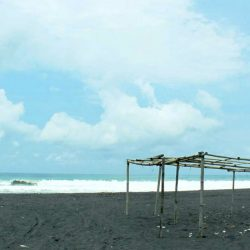 Pantai Trisik