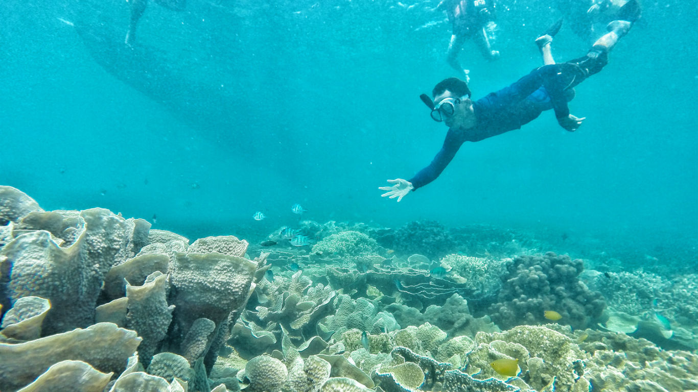 Snorkeling Pantai Sangiang