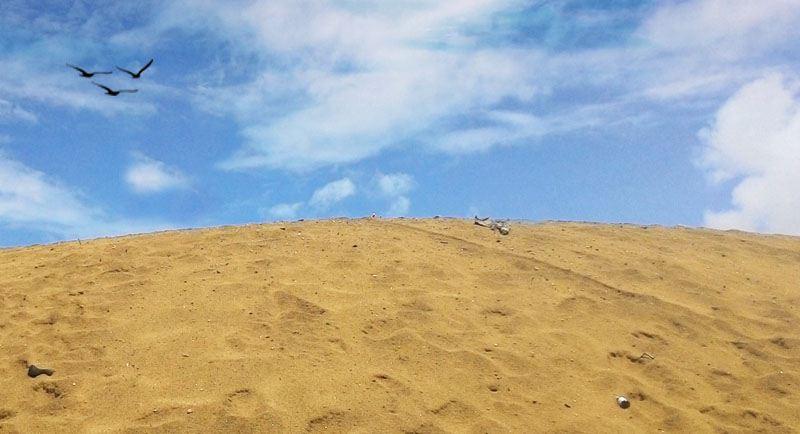 Gumuk Pasir Pantai Dlodo Tulungagung