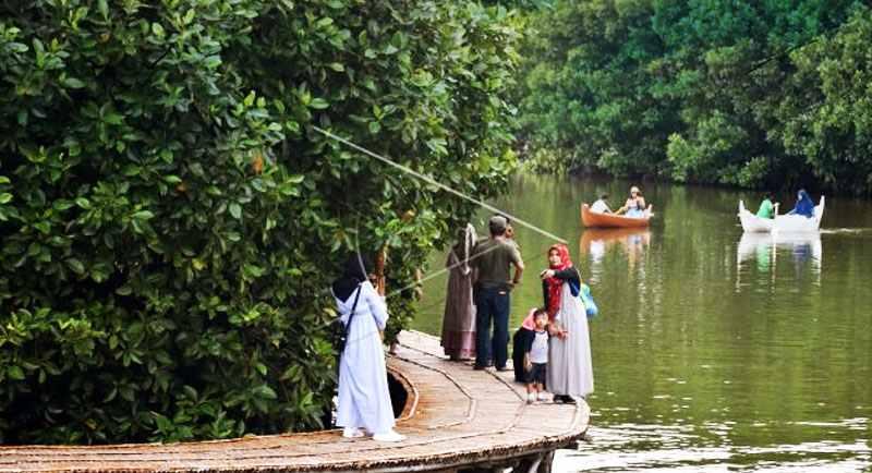 Mangrove Pantai Tirang Semarang