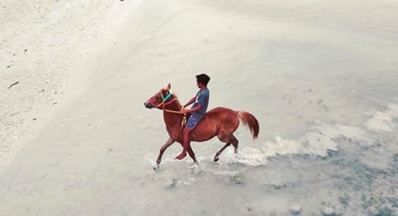 Naik Kuda Di Pantai Londa Lima