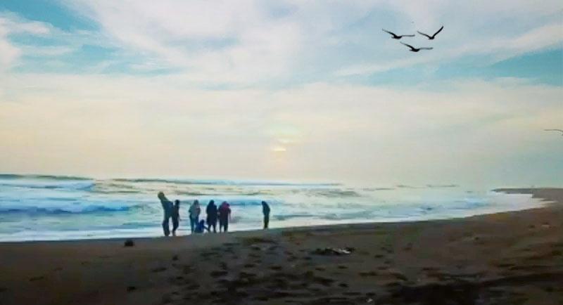 Obyek Wisata Pantai Keburuhan Purworejo