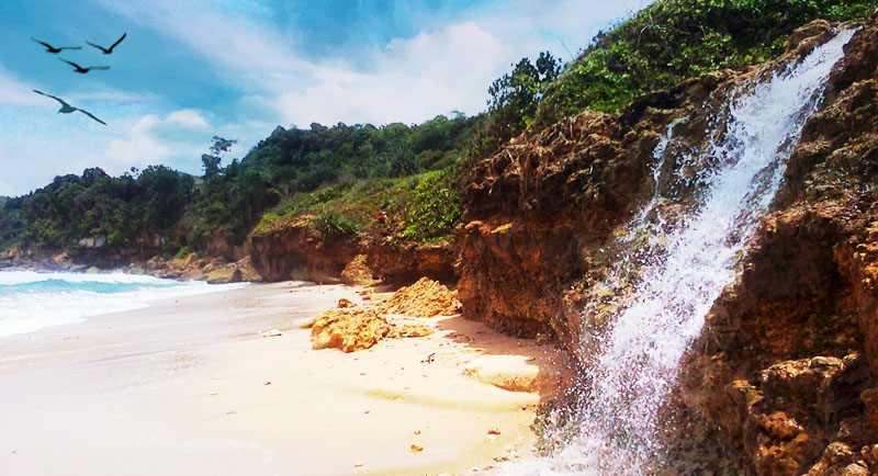 Pantai Pacar Tulungagung 1