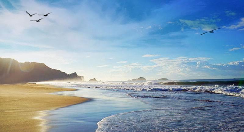 Pantai Sukamade Yang Indah