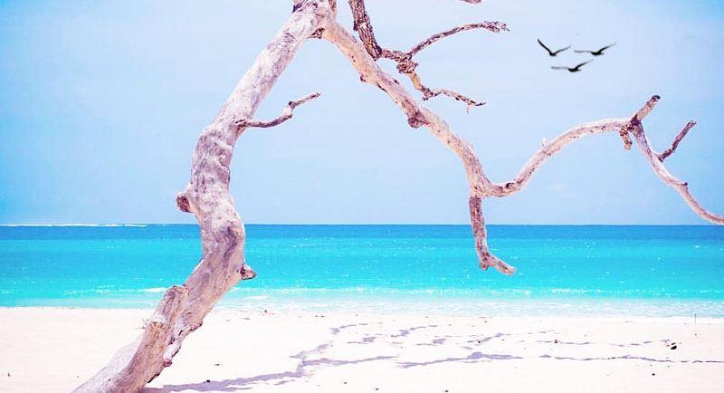 Pantai Tarimbang Sumba Ntt