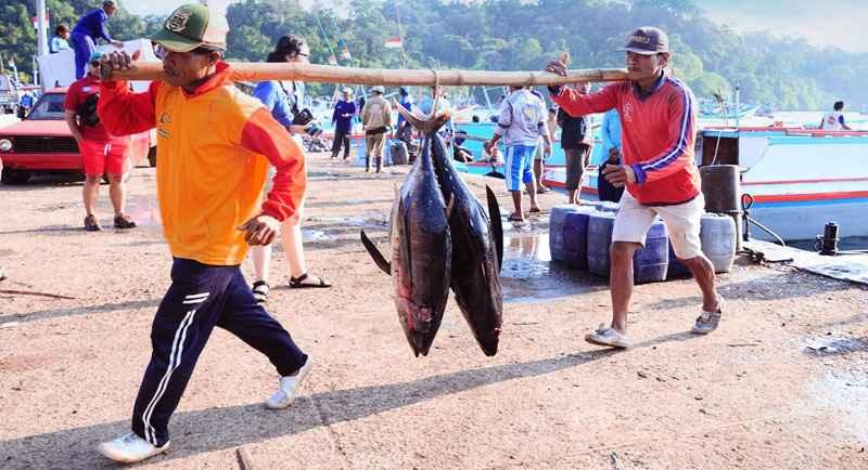 Pelelangn Ikan Di Pantai Genjik Purworejo
