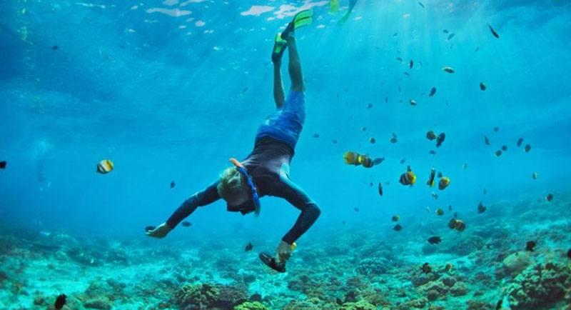 Snorkeling Di Pantai Jatimalang