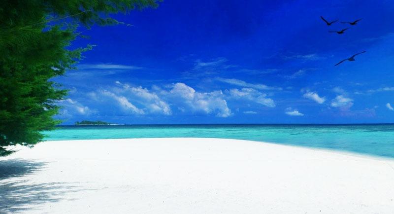 Wisata Pantai Barakuda Karimunjawa