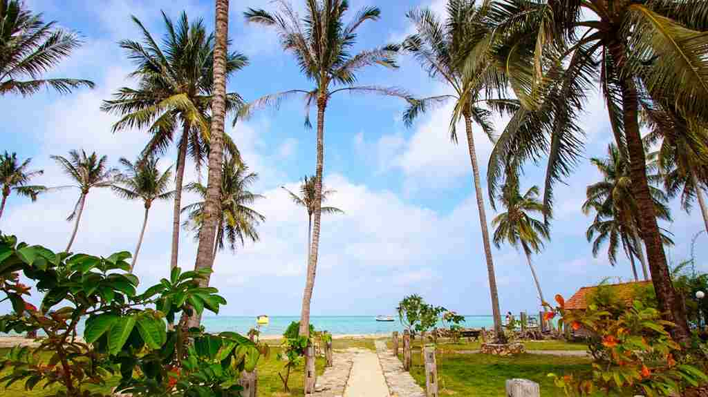 Wisata Pantai Barakuda