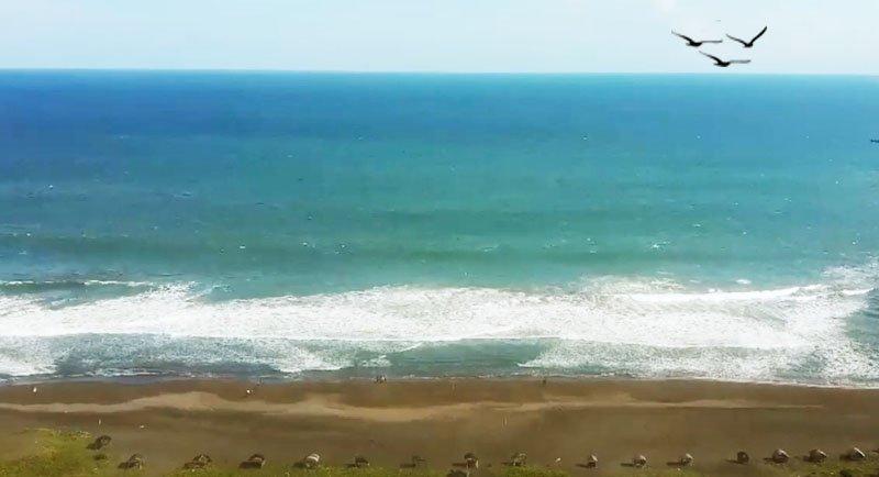 Wisata Pantai Ketawang