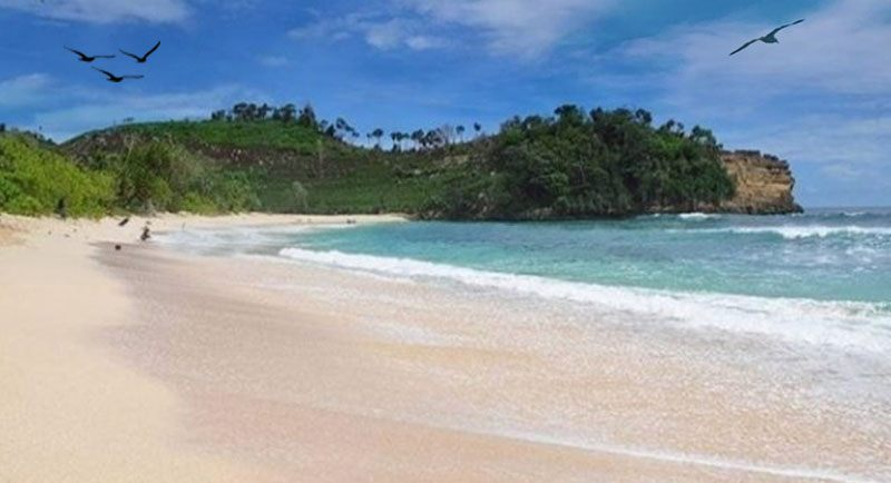 Wisata Pantai Ngudel
