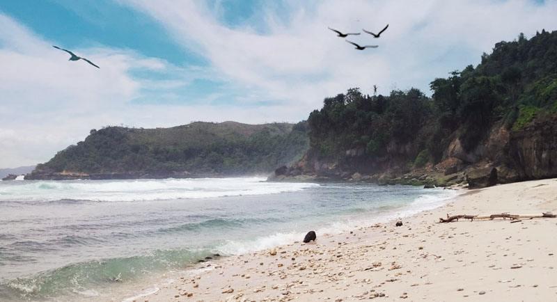 Wisata Pantai Pacar