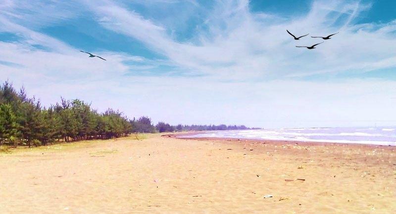 Wisata Pantai Wonokerto Pekalongan