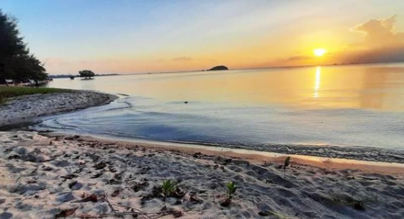 Htm Pantai Tanjung Pendam