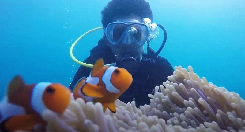 Diving Di Pantai Baloiya