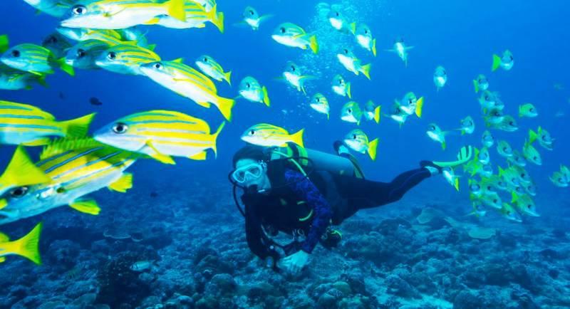 Diving Di Pantai Pasir Dua
