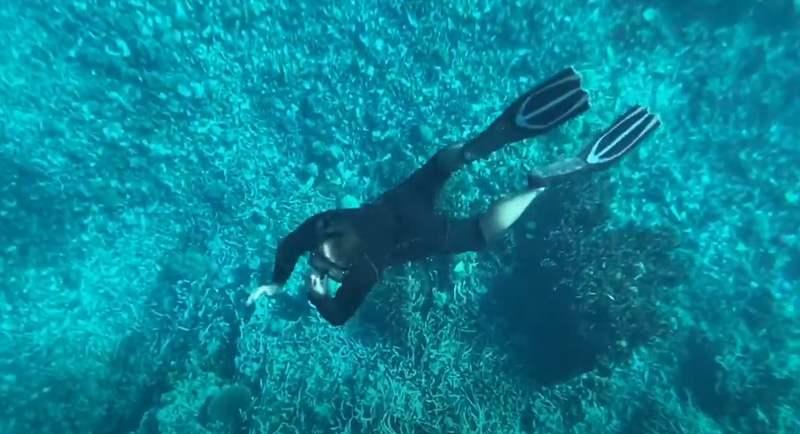 Diving Di Pantai Sulamahada