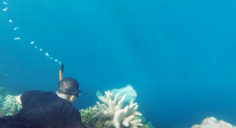 Snorkeling Di Pantai 6 Angkasa