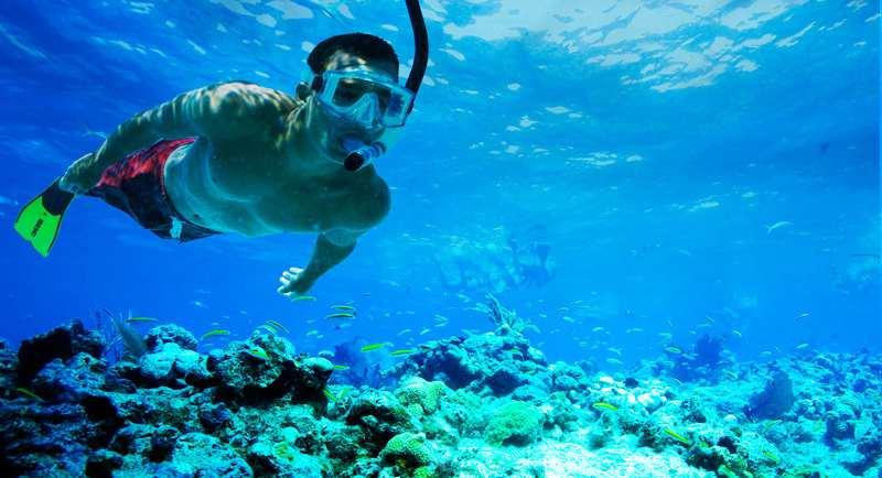 Snorkeling Di Pantai Kolo