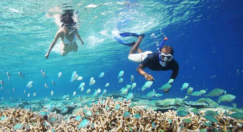 Snorkeling Di Pantai Samboang