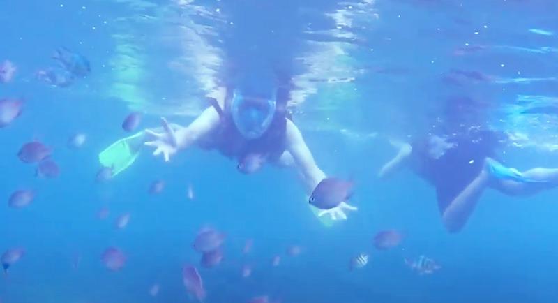 Snorkeling Di Pantai Tanjung Gelam