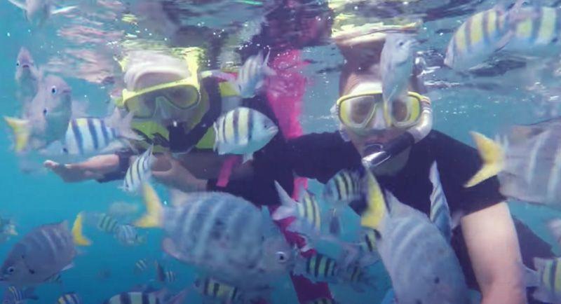 Snorkeling Di Pantai Ujung Kareung