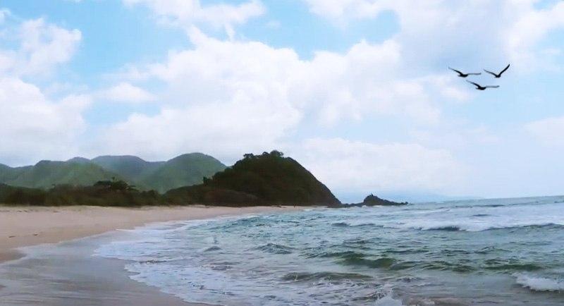 Wisata Pantai Wane