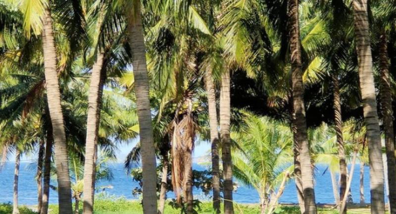 Objek Wisata Pantai Bletok 2
