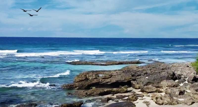 Wisata Pantai Tapak Gajah